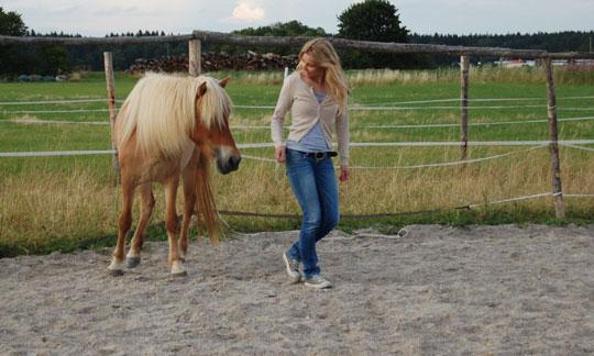 Pferdegestützte Therapie München
